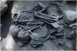 Restos encontrados en chapultepec